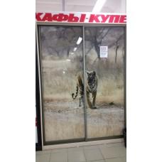 "Шкаф-купе ""Тигр"""