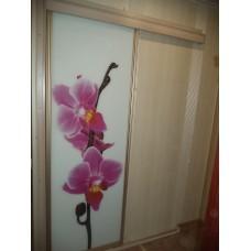 """Двери-купе """"Орхидея"""""""